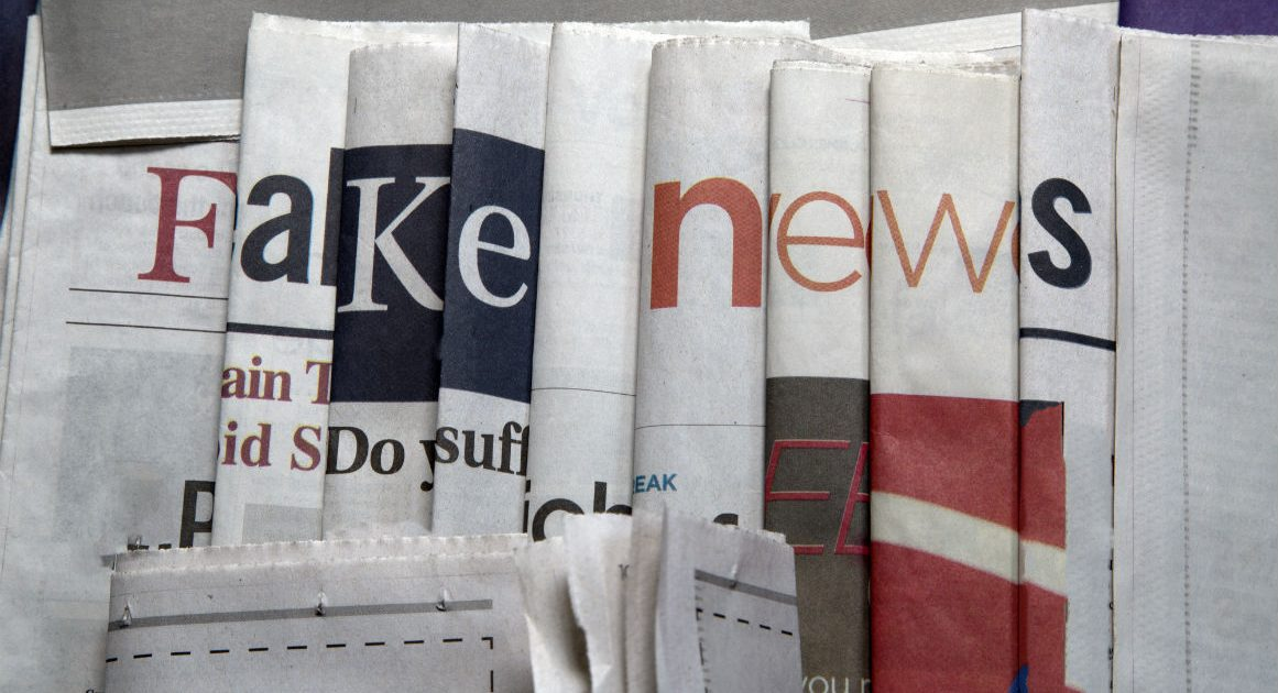 What If Widespread Disinformation Is the Solution to Fake News?