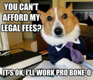 He Said He Wanted a 'Lawyer[,] Dog'; The Court Ruled That Was Too Vague