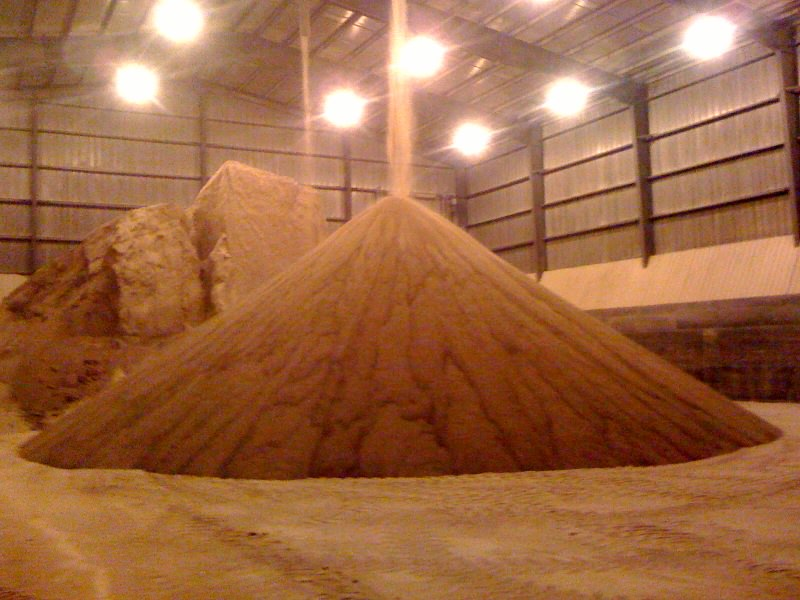 distillers grains