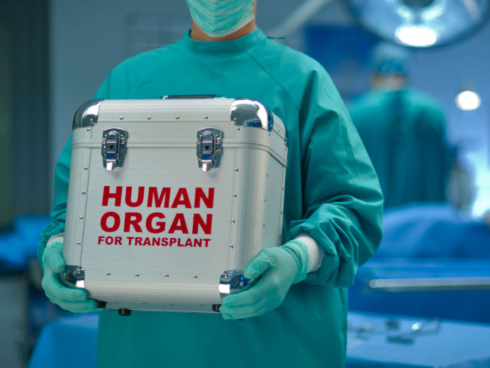 Laws Banning Organ Markets Kill Even More People than